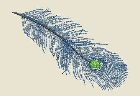 Motif broderie plume de paon