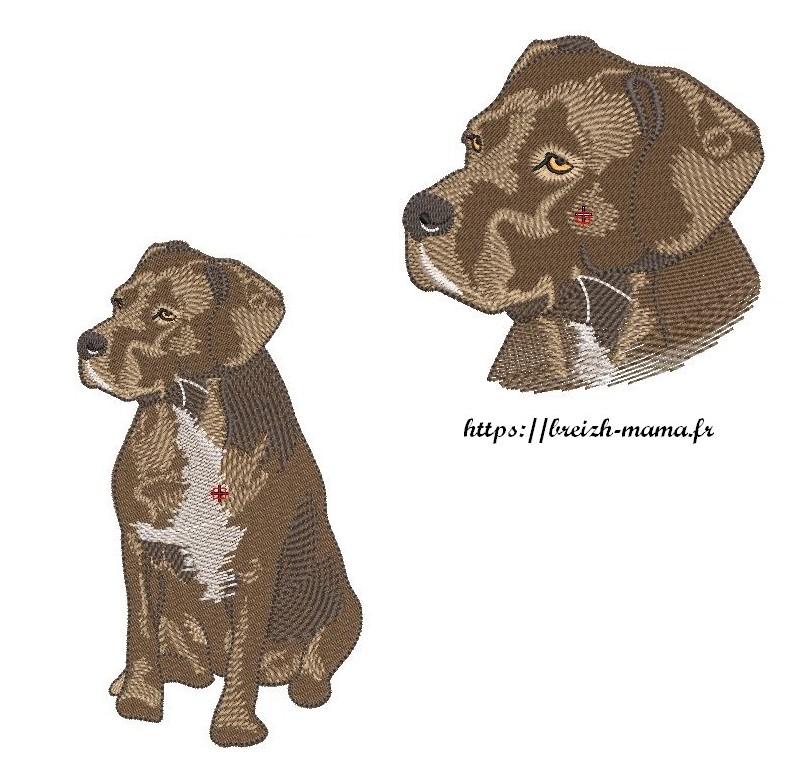 Lot 2 motifs broderie chien cane corso croisé labrador