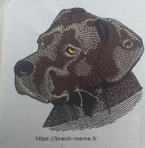 Motif broderie tet cane coriso labrador