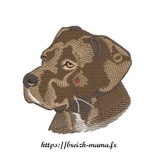Motif broderie tete cane coriso labrador